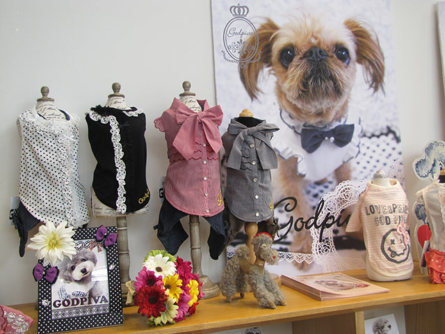 Fashion for dogs. Photograph: Ruth Evans