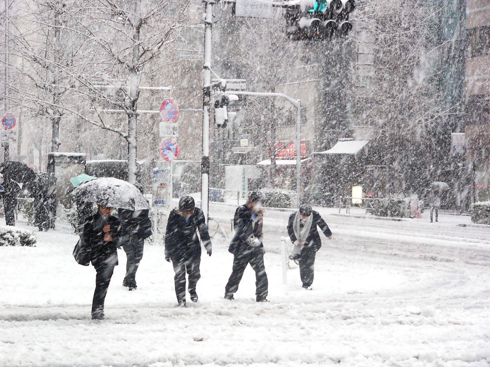 snowintokyo