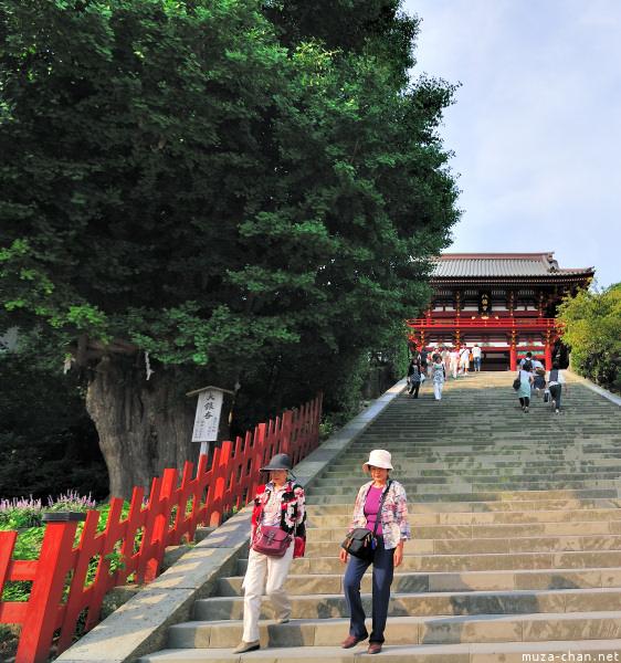 kamakura-tsurugaoka-hachimangu-23