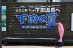 Welcome to Shimoda